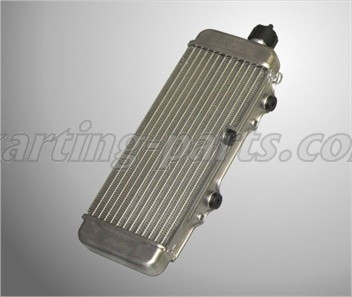Radiator with cap silver ROTAX MAX (295927)