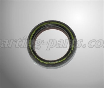 Oil sealing 28x38x7 ROTAX MAX (230425)