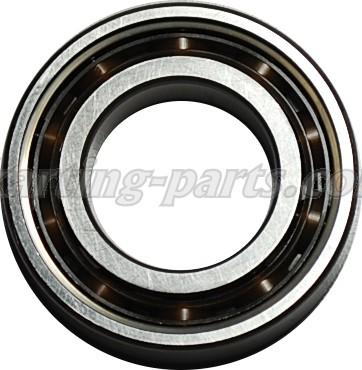6005-TN9/C3 SKF Main bearing ROTAX MAX(232341) Ø25X47X12