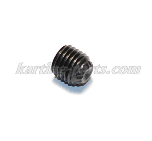 Socket Set Screw M8x1,0