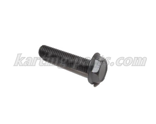Raket 85 Cylinder screw